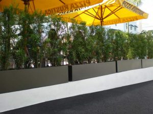 Line of gray rectangular planter boxes at Pizza Rustica