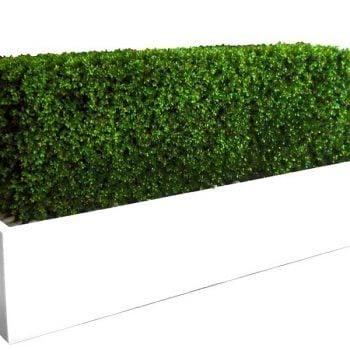 Long white rectangular planter