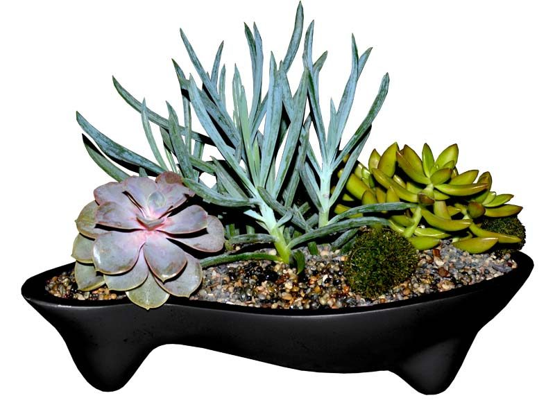Dale black fiberglass planter