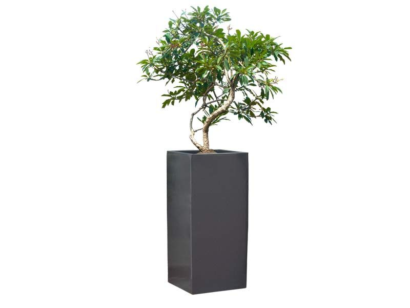 Santiago gray planter