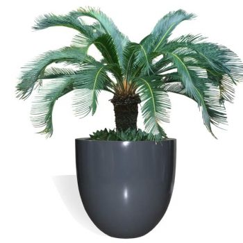 Alzira round gray planter