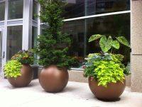 Three bronze spherical planters outdoors