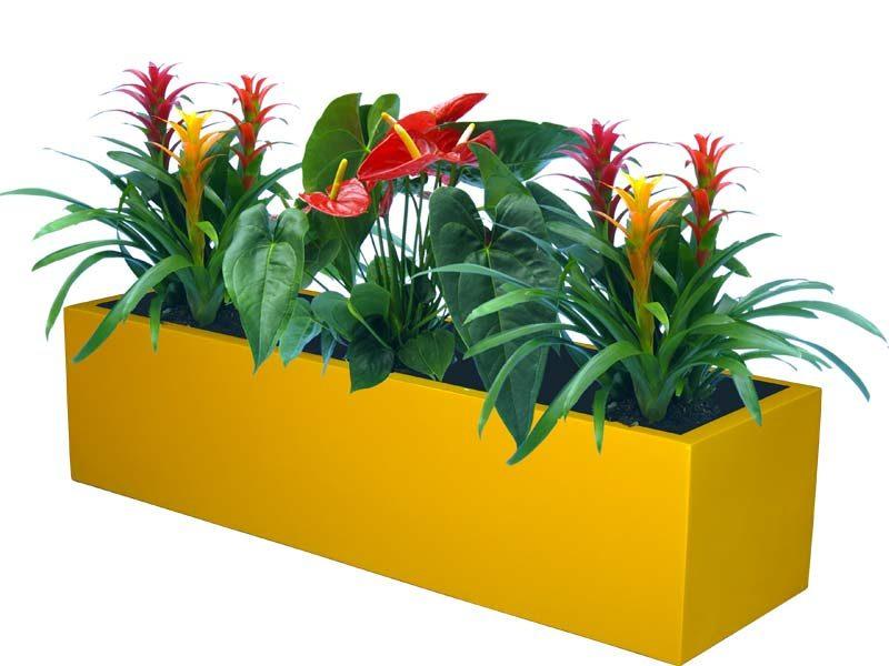 Bonn low rectangular yellow planter
