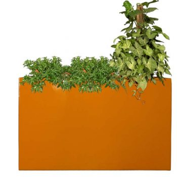 Tall orange Tolga planter box
