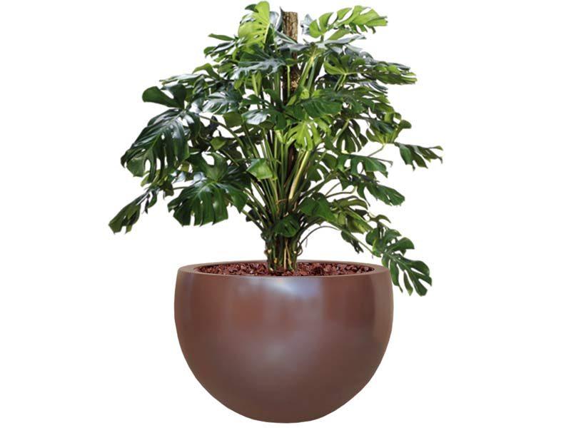 Tarragona tapered round brown planter