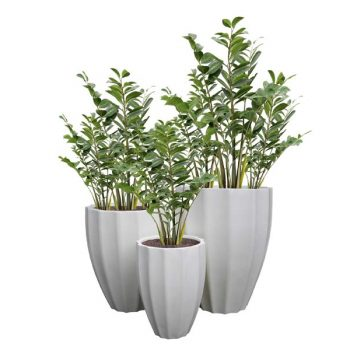 Alicante white planters in three sizes with ribbed texture