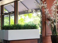 White rectangular planter indoors