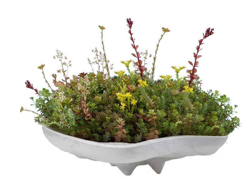 Pearl table top white planter