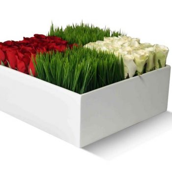 Square table top white planter