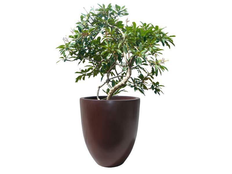 Brannan brown round tapered planter