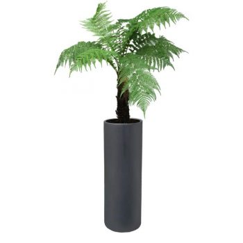 Corry cylinder gray planter