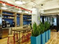 Line of blue square planters in an office kitchen
