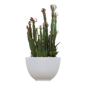 Round white bowl planter