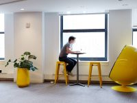 Office space with yellow planter