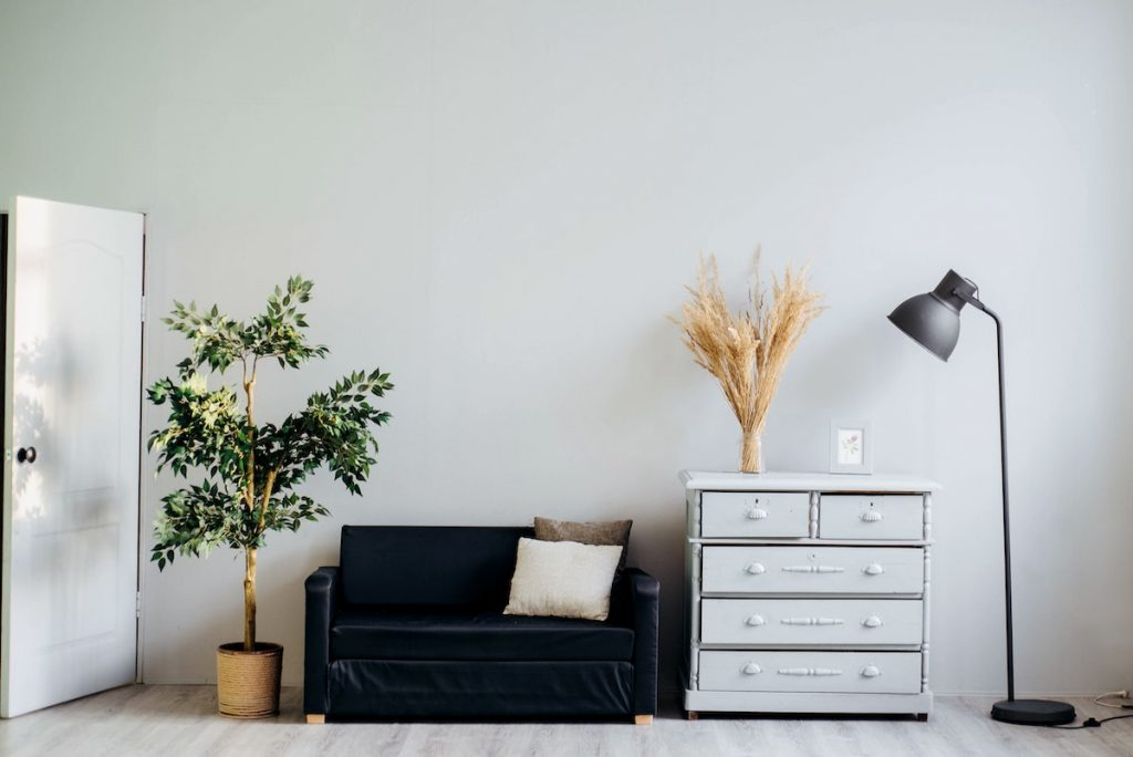 Minimalism room decor with plants
