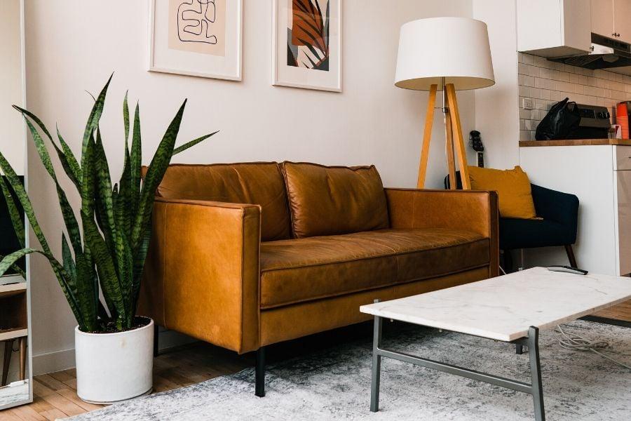 Room decor with plants