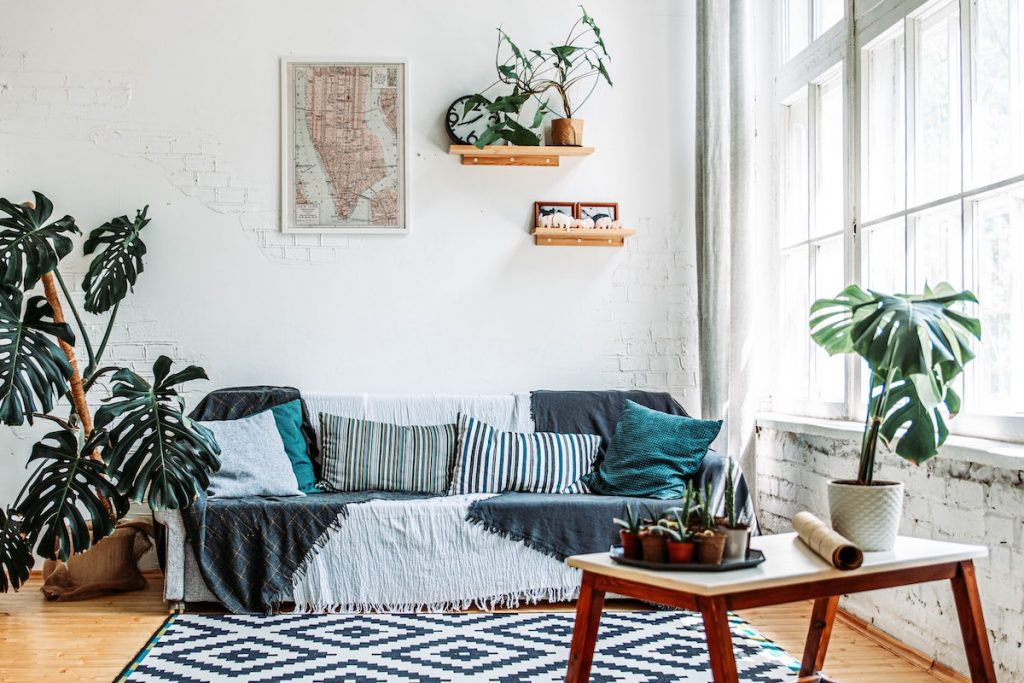 Natural light in living room with plants