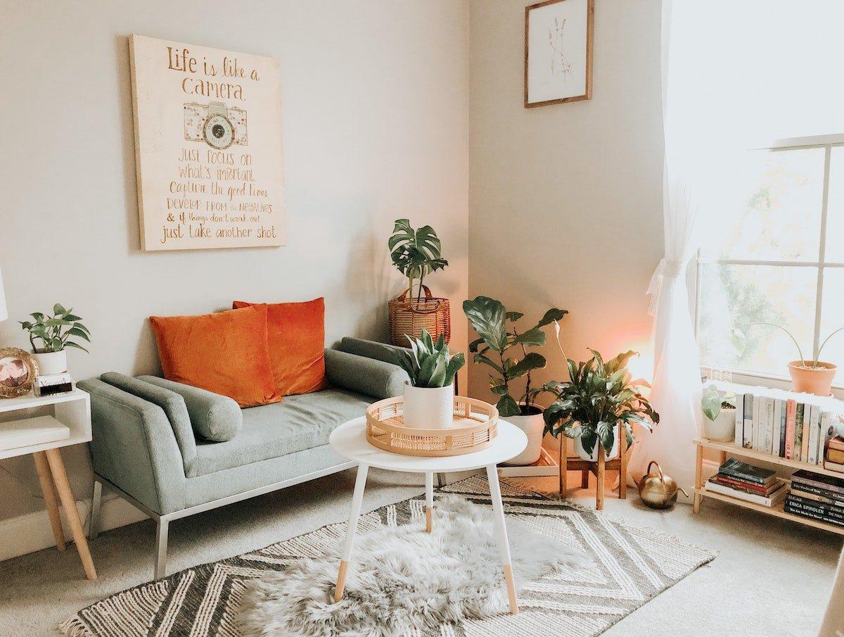 Cozy living room decor with plants
