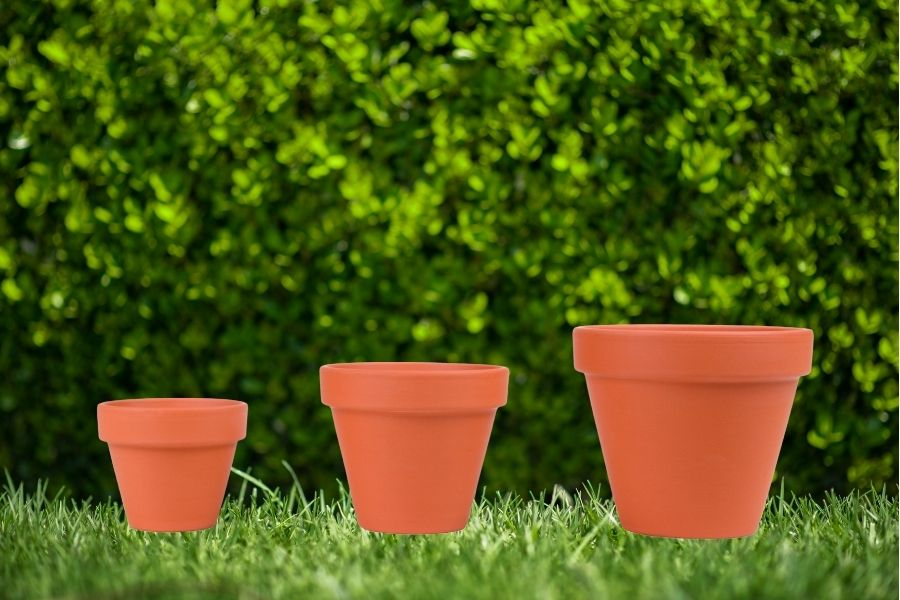 landscaping with potted plants