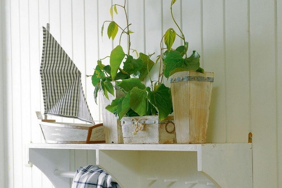 best flower pot arrangements on shelf