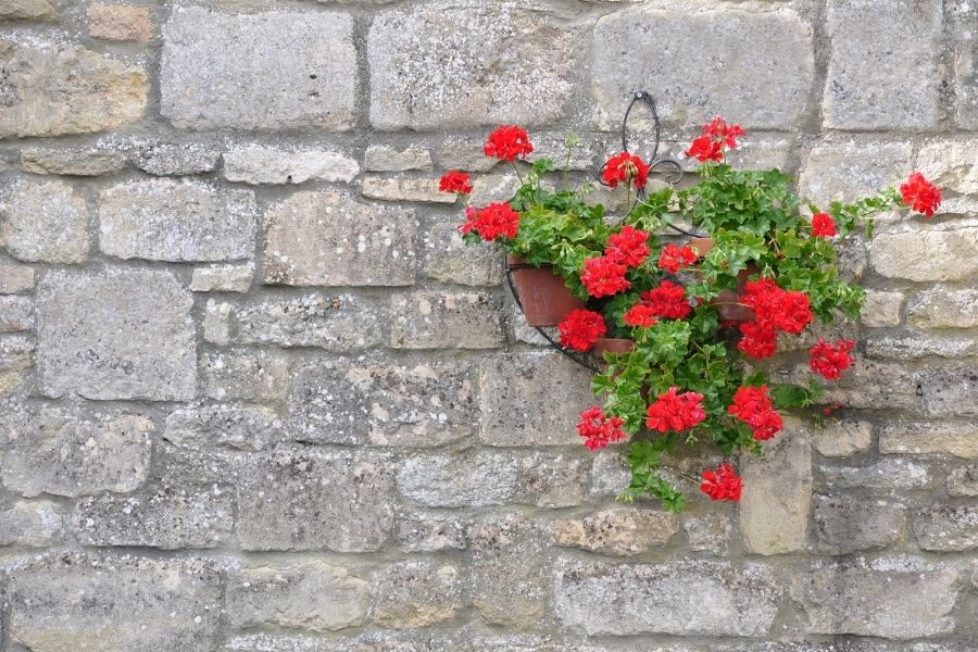 Wall hangers with flowers
