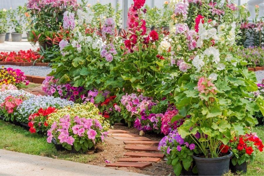 best flower pot arrangements walkway