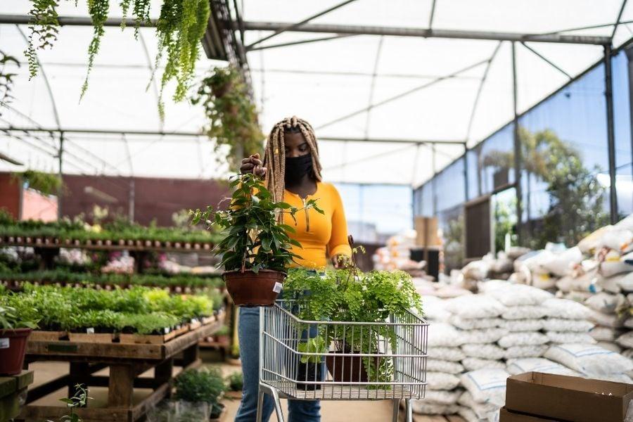Customer buying plants on garden shop