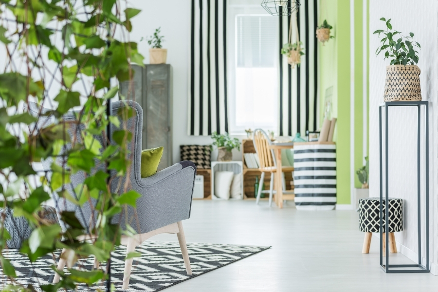 Trendy apartment with green plants