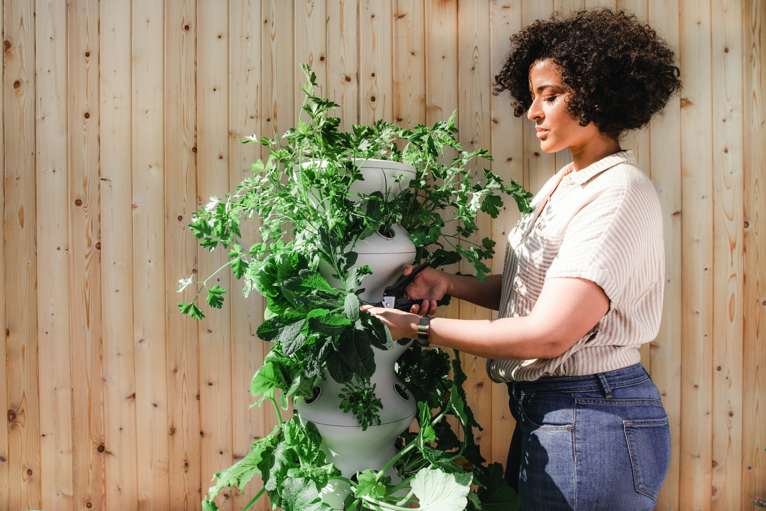 Pruning your plants can be therapeutic.