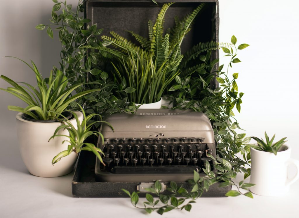 Green workstation
